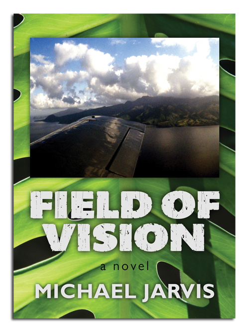 Field of Vision by Michael Jarvis